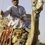 The one very helpful camel jockey